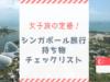 【女子旅の定番】シンガポール旅行の持ち物チェックリスト決定版